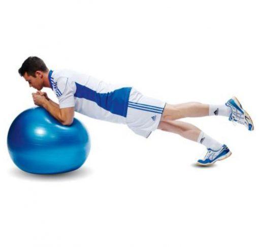 swiss ball ballon bleu tres grand-diametre 65 cm demonstration exercice