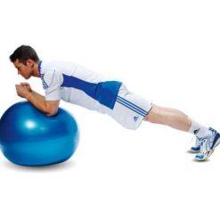 swiss ball ballon bleu tres grand-diametre 65 cm gainage exercice
