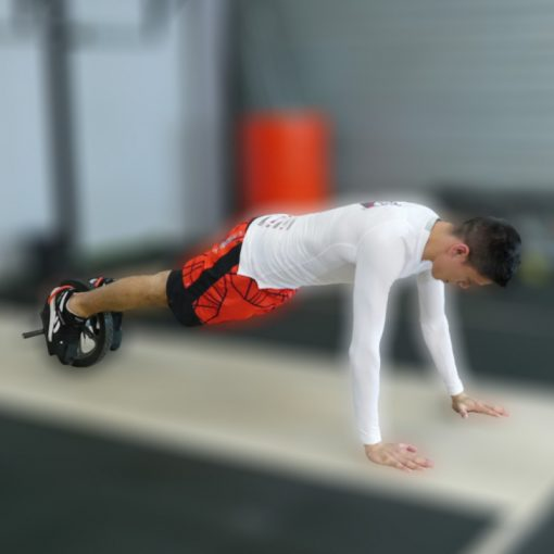 Roue abdominale pieds mains exercice
