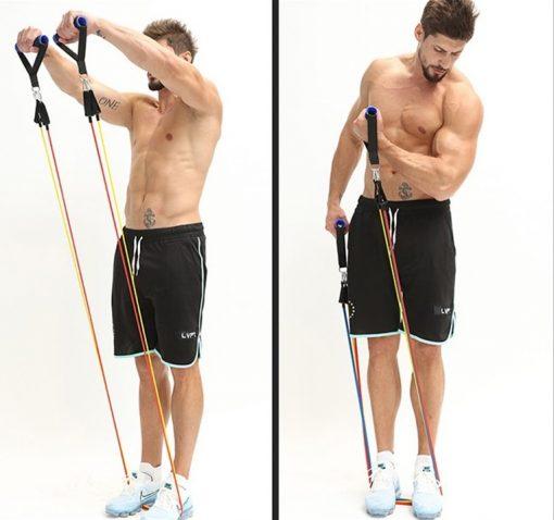 elastiques musculation fitness exercices sans porte