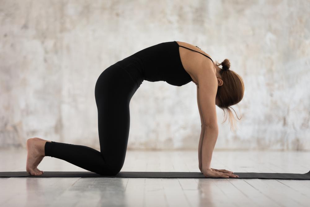 exercices mal de dos position du chameau